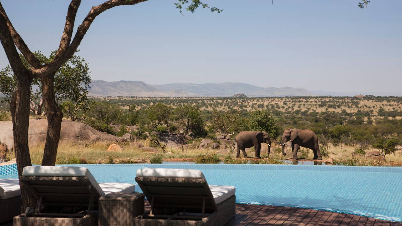 Four Seasons Safari Lodge Serengeti Tanzaniа