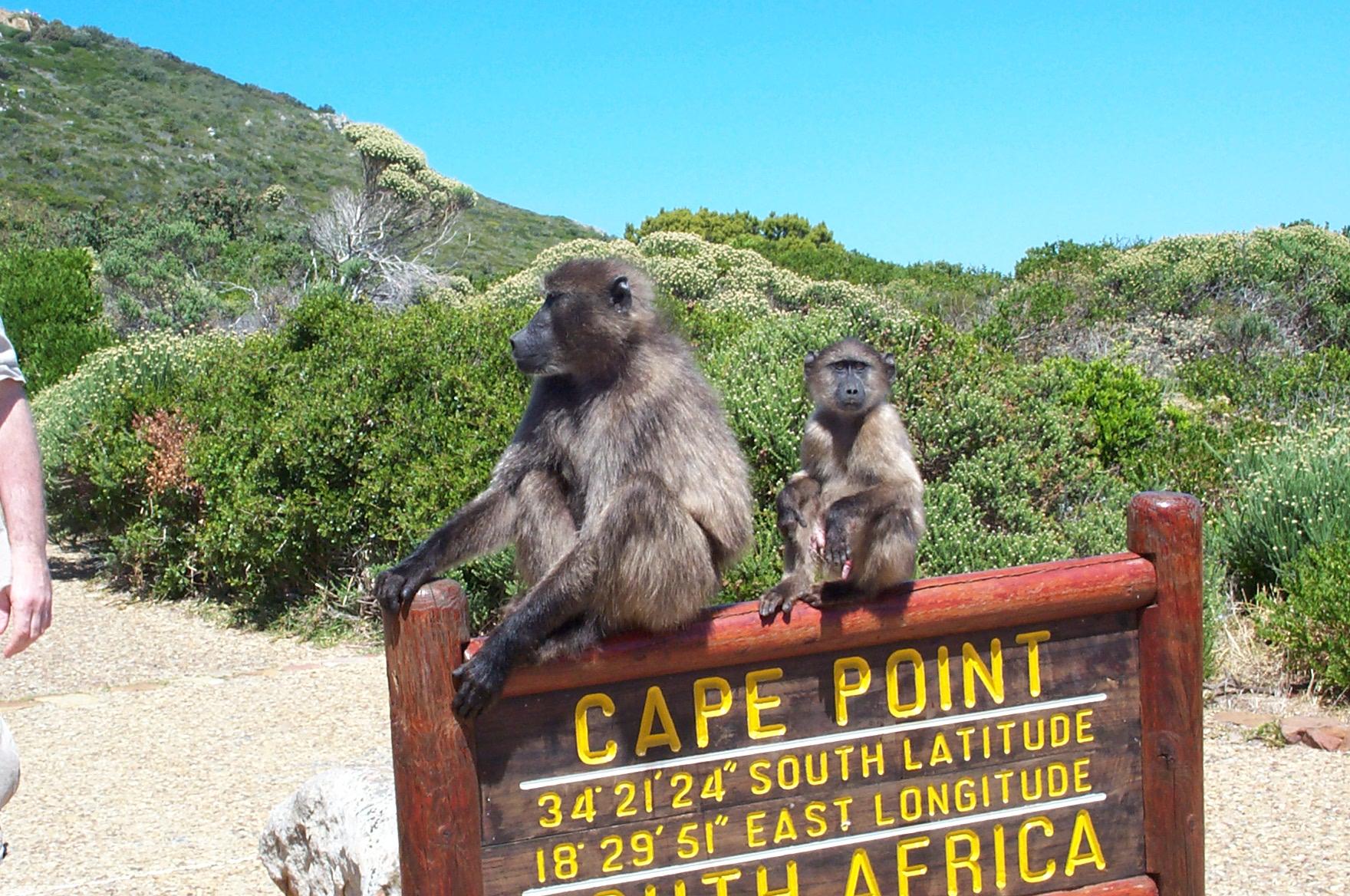 """Южна Африка с парка Крюгер /ЮАР/,Зимбабве с водопада """"Виктория"""" и Ботсвана"""