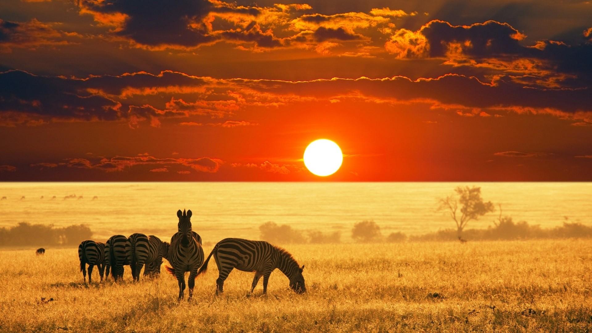 """Екскурзия Южна Африка –  Кейптаун, Национален парк Крюгер, водопада """"Виктория"""""""