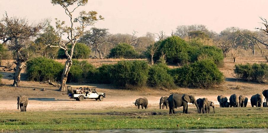 Необятната Ботсвана – Маун, резервата Мореми, Макгадикгади, Национален парк Чобе, водопава Виктория